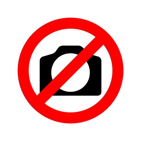prohíbe el aborto